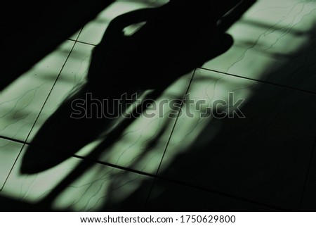 the shadow of the little girl on the window trellis with the impression of horror #1750629800
