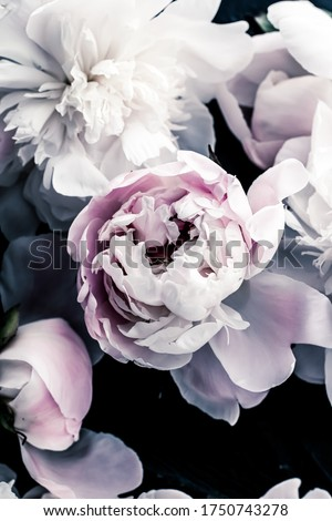 Pastel peony flowers as floral art background, botanical flatlay and luxury branding design #1750743278