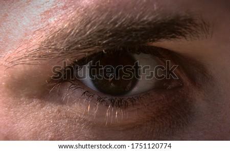 Brown eye reflecting the photographer