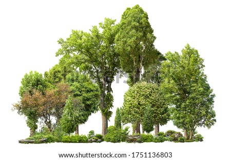 Cutout tree line. Forest and green foliage in summer. Row of trees and shrubs isolated on white background. Forest scape. High quality clipping mask . #1751136803