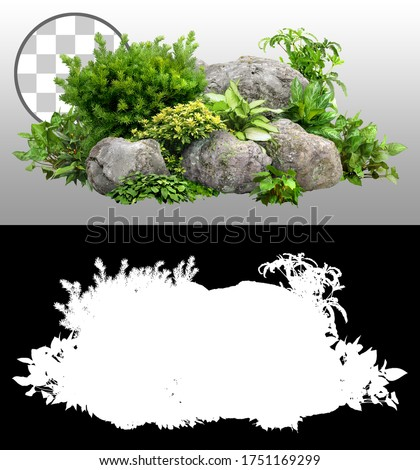 Cutout rock surrounded by flowers. Garden design isolated on transparent background via an alpha channel. Flowering shrub and green plants for landscaping. Decorative shrub and flower bed. #1751169299
