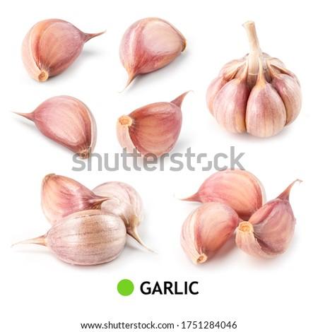 Garlic white background. Garlic bulb and cloves on white. Garlic bulb, clove isolated. White garlic. Set. #1751284046