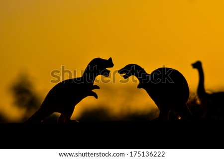 the silhouettes of dinosaurs #175136222
