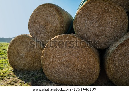 beautiful Hay  Bales Bale Harvest Round Bales Winter Feed #1751446109