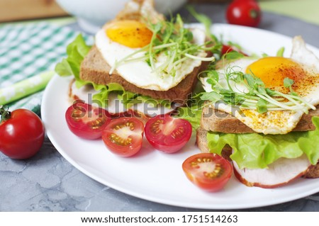 Sandwiches with fried egg, meat, tomatoes, peas sprouts and salad. Breakfast on a white plate. #1751514263