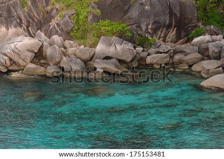 Beautiful sea and tropical island with crystal clear water, Similan Island, Thailand #175153481