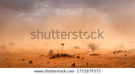 Climate change in Africa: dramatic dusty sandstorm blowing sand and dirt through savanna, disrupting life in Melkadida refugee camp , Dollo Ado, Somalia region, Ethiopia, Horn of Africa Royalty-Free Stock Photo #1751879375