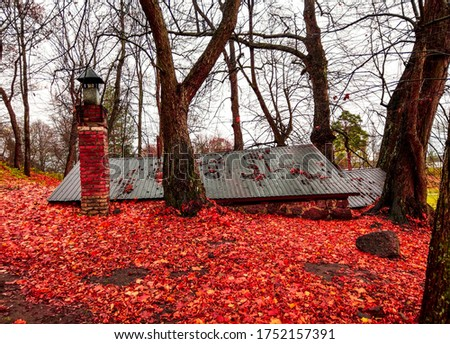 Red autumn forest hut underground. Forest hut underground in red autumn #1752157391
