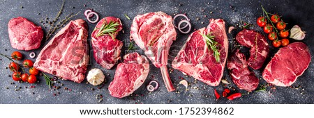 Set of various classic, alternative raw meat, veal beef steaks - chateau mignon, t-bonnet, tomahawk, striploin, tenderloin, tenderloin, new york steak. Flat lay top view on gray stone cutting table #1752394862