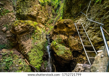 Ram-szakadek, Ram Ravine or Ram Canyon near the village Dobogoko and Domos in Hungary, a very popular and beautiful hiking, trekking trail and tourist attraction #1752721799