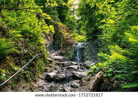 Ram-szakadek, Ram Ravine or Ram Canyon near the village Dobogoko and Domos in Hungary, a very popular and beautiful hiking, trekking trail and tourist attraction #1752721817