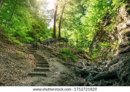 Ram-szakadek, Ram Ravine or Ram Canyon near the village Dobogoko and Domos in Hungary, a very popular and beautiful hiking, trekking trail and tourist attraction #1752721829