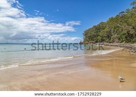 A picture perfect day on Noosa Beach, Queensland, Australia