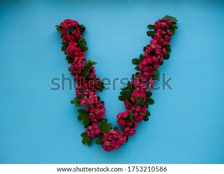 The letter V is lined with hawthorn flowers on a blue background
