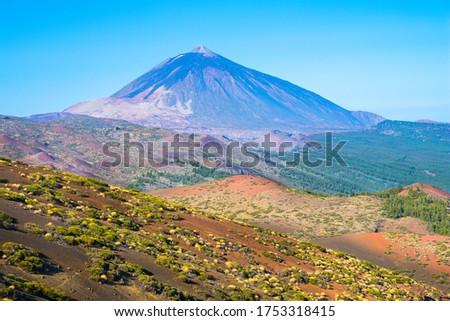 Beautiful view of Teide National Park with Mount Teide (Pico del Teide) in the background - Santa Cruz de Tenerife, Canary Island - Spain #1753318415
