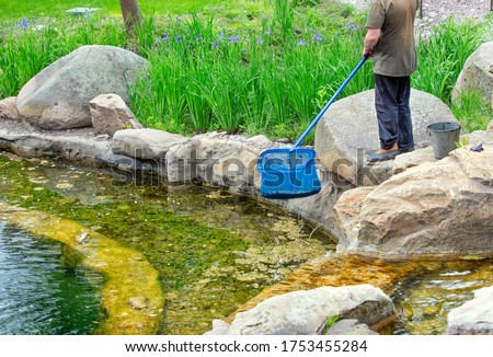 Seasonal pond care in a city park. A worker cleans the pond with a net from of mucus, aquatic plants and falling leaves.