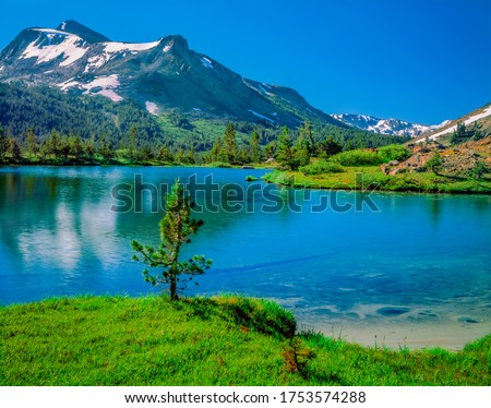 Mount Dana stands above a snow tarn in the Tioga Pass of Yosemite National Park. The snow capped mountain is reflected in the water. #1753574288