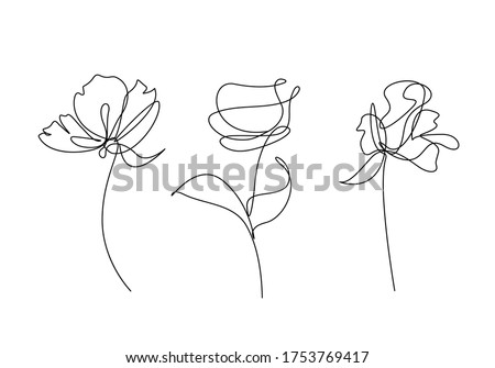 Continuous Line Drawing Set Of Plants Black Sketch of Flowers Isolated on White Background. Flowers One Line Illustration. Vector EPS 10.