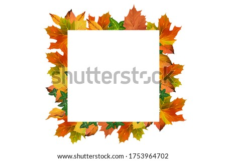 Bright autumn frame. Golden autumn clip art on white background