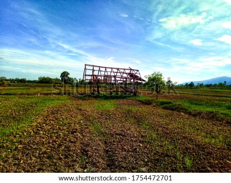 One shabby hut in the middle of a rice field without a sun shade. #1754472701