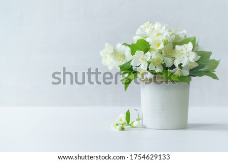 a bouquet of jasmine flowers in a vase on the table close-up. a bouquet of white jasmine flowers on a white background. holiday card with jasmine flowers. #1754629133