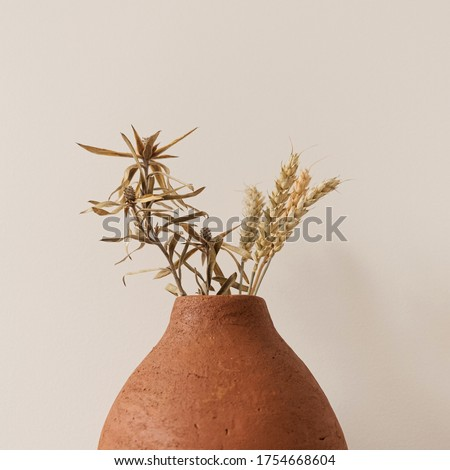 Dry rye, wheat stalks in red clay pot on white background. Minimal interior design decoration. #1754668604