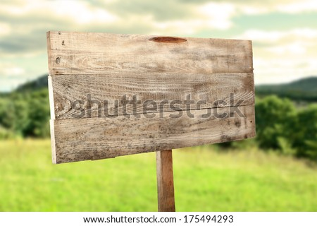 forest and wooden sign