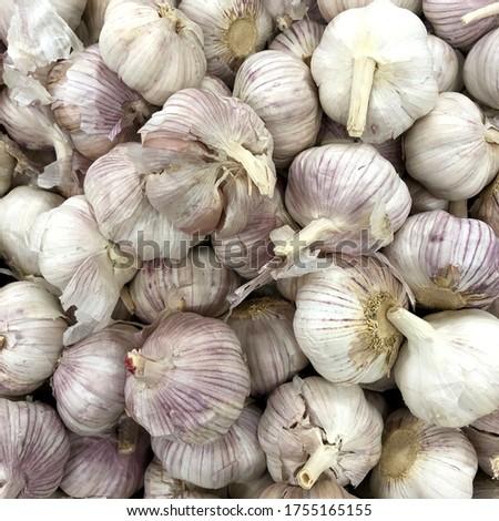 Macro photo vegetable garlic. Stock photo garlic background #1755165155