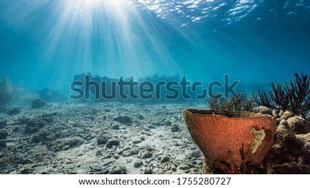 """Ship wreck """"Tugboat """" in  shallow water of coral reef in Caribbean sea / Curacao with view to surface and sunbeam Royalty-Free Stock Photo #1755280727"""