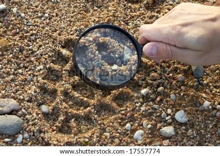 magnifier, trekkers boot print #17557774