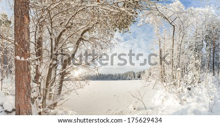 On the bank of the winter frozen lake. A winter landscape #175629434