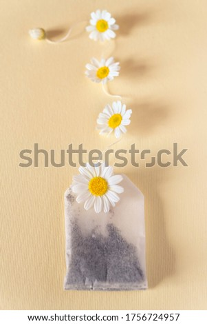 Tea bag with a thread along the length of which chamomile flowers are laid. Vertical image. Flat lay. Top view