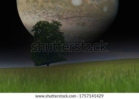 Lone tree with Jupiter in background. Concept of what a planet Jupiter orbiting the earth would look like. Elements of this image furnished by NASA
