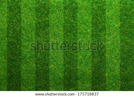 Green grass soccer field background  Royalty-Free Stock Photo #175718837