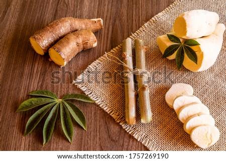 Cassava, also called manioc, yuca, balinghoy, mogo, mandioca, kamoteng kahoy, tapioca and manioc root, a woody shrub of the Euphorbiaceae family native to South America #1757269190