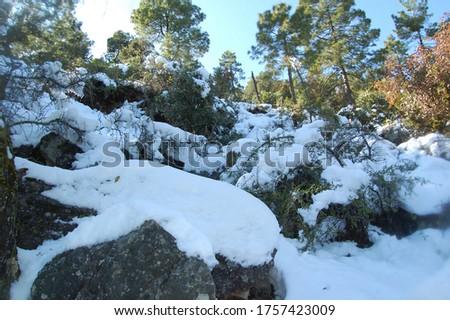 A beautiful snowfall view image