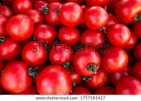Macro Photo food vegetable tomato cherry. Texture background cherry tomatoes. Stock photo Cherry tomatoes are small juicy and red. #1757581427