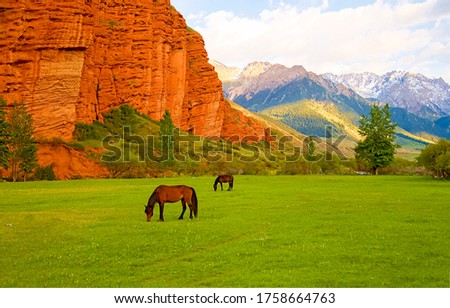 Mountain valley horse pasture landscape. Horses grazing in mountains #1758664763