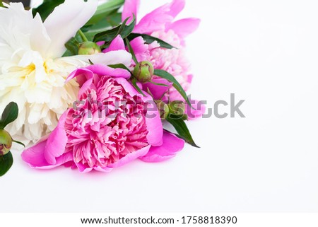 White and pink peonies and buds on a white background. Bouquet of fresh flowers #1758818390