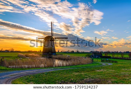 Sunset windmill farm in Holland. Windmill farm sunset landscape. Sunset windmill farm landscape #1759124237