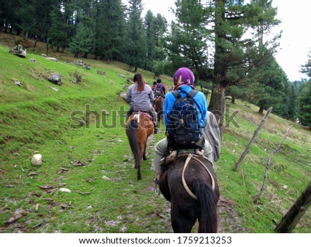 blurred picture of Tourists riding horses to watch the nature on the moutains of Laripora village Pahalgam, Jammu and Kashmir, India