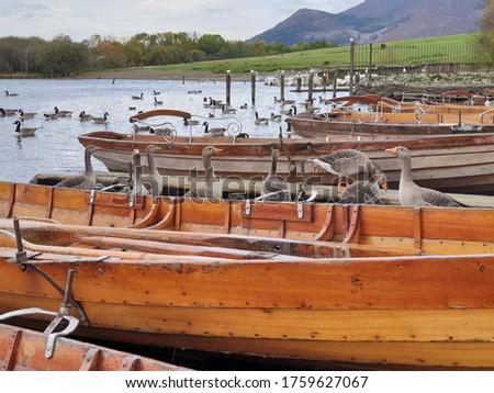 Paddle boats at the lake shore. Derwent Water, Keswick, Lake District, Cumbria, U.K. #1759627067