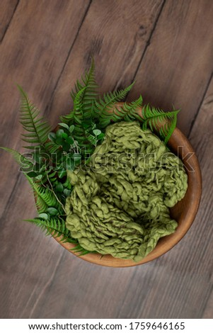 brown basket made of wood for a photo session of newborns. props for the photo shoot are decorated with fern leaves. background for a newbourn photo shoot #1759646165