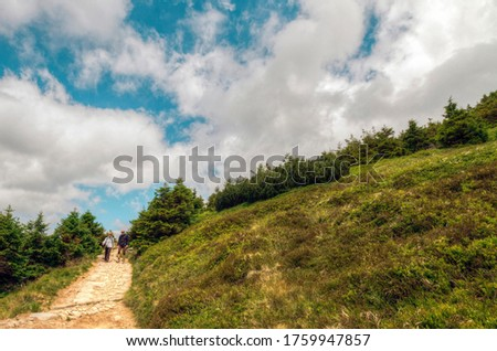 Beautiful mountain trail background picture