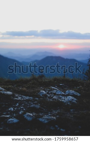 Nature red purple orange sunset macro view golden hour landscape with flowers, grass, rocks and valley in Malá Fatra mountains national park in Slovakia