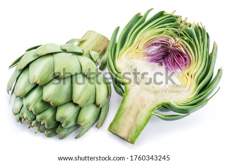 Artichoke flower edible buds isolated on white background. Close-up picture.