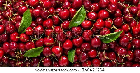 fresh ripe cherries as background, top view #1760421254