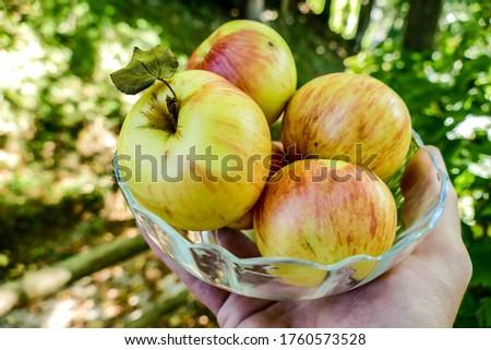 apples in basket, beautiful photo digital picture, beautiful photo digital picture