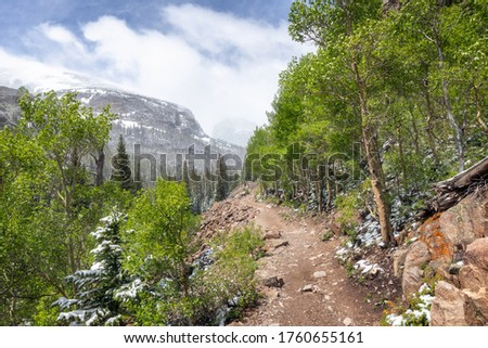 Spring Trees with a dusting of snow on them along a hiking trail up to Mills Lake and Loch Vale in Rocky Mountain National park #1760655161
