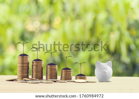 White piggy bank with green sprout on rows of increasing coins on wood table. Financial, growth business investment concept: Stock investment for dividend and capital gain in a long-term growth Royalty-Free Stock Photo #1760984972